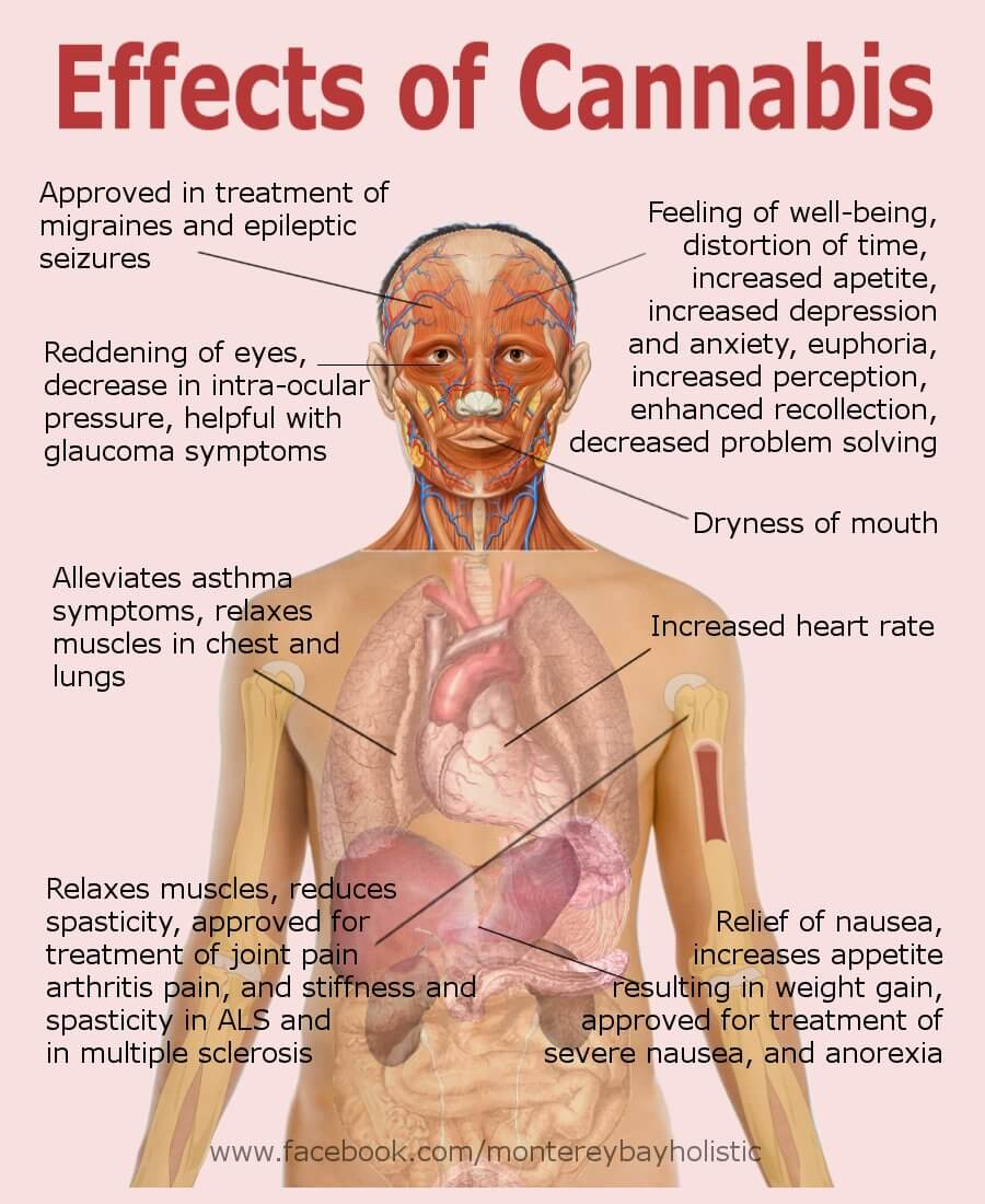 Physical effects of smoking marijuana