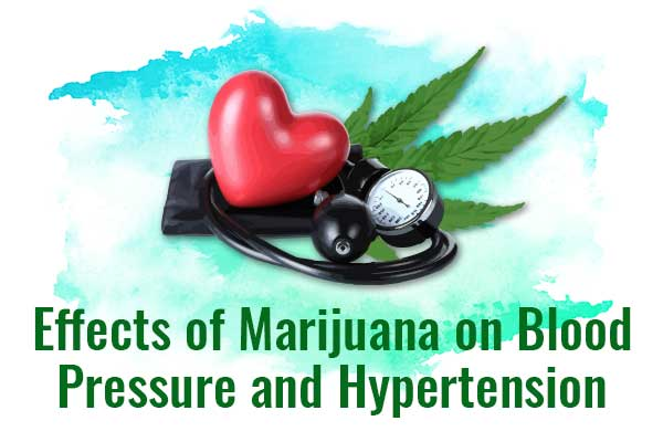 Effects of Marijuana on Blood Pressure  Does weed lower or increase