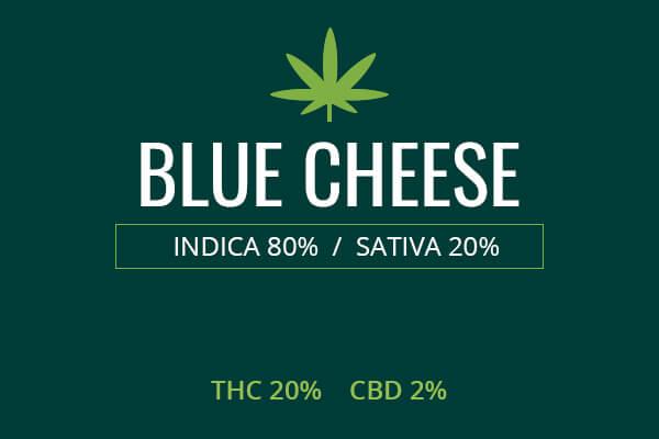 Marijuana Blue Cheese