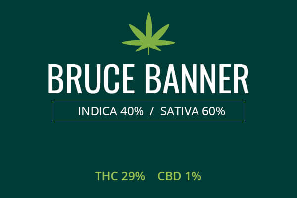 Marijuana Bruce Banner