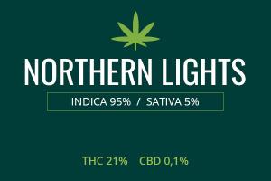 Marijuana Northern Lights