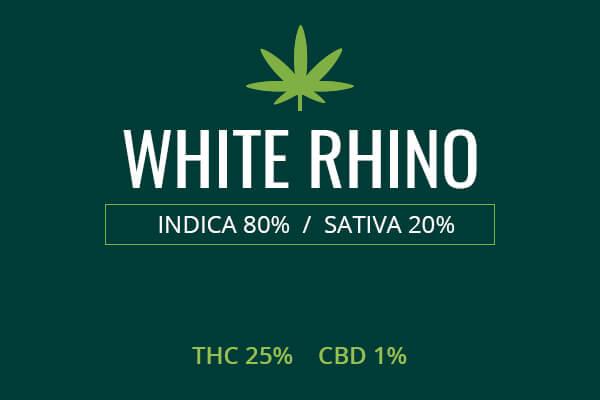 Marijuana White Rhino