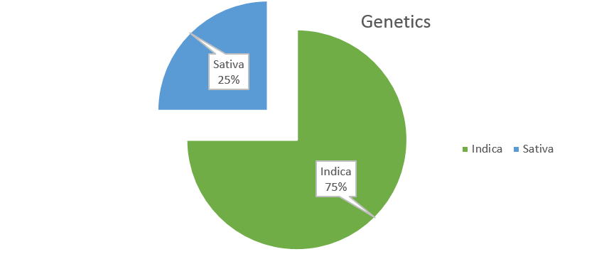 Death Star weed strain genetics