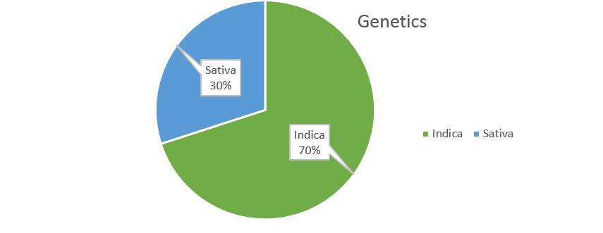 G13 weed strain genetics