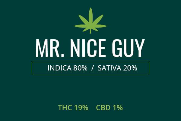 Marijuana MR. NICE GUY