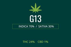 Marijuana G13
