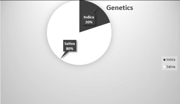 chernobyl strain genetics