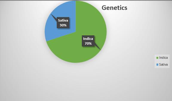 g13 strain genetic