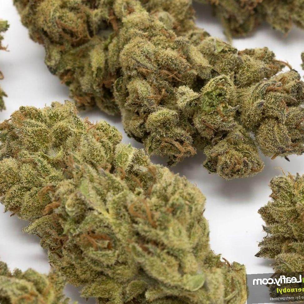 Chernobyl cannabis