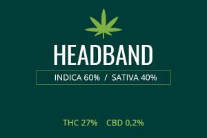 Marijuana Headband