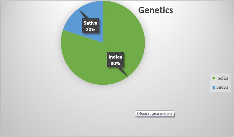 khalifa kush genetics