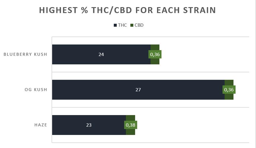 Cannabis Blueberry Kush strain THC CBD