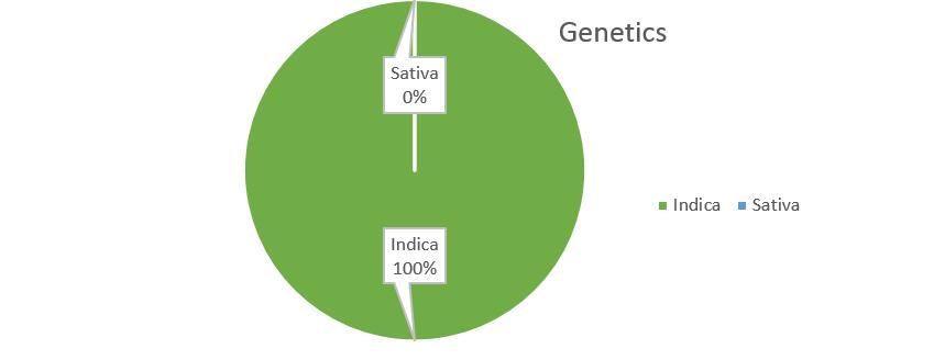 Blueberry Kush weed strain genetics