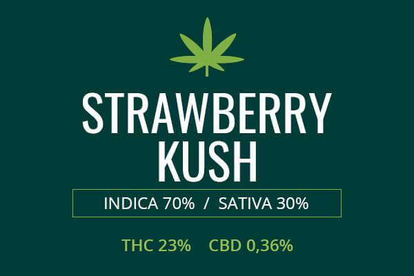 Marijuana Strawberry Kush