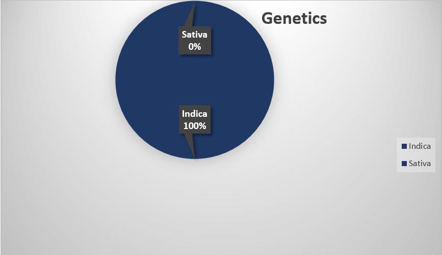 blueberry genetics