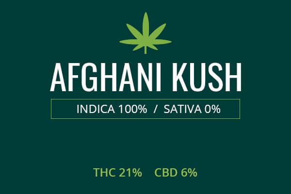 Marijuana Afghani Kush