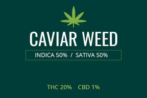 Marijuana Caviar Weed