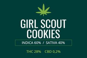 Marijuana Girl Scout Cookies
