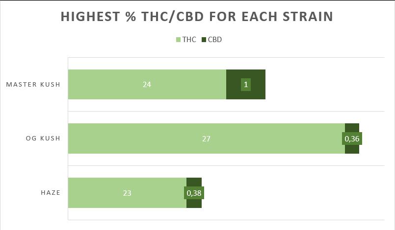Cannabis Master Kush strain THC CBD