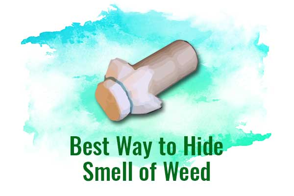 Best Way to Hide Smell of Weed - NCSM