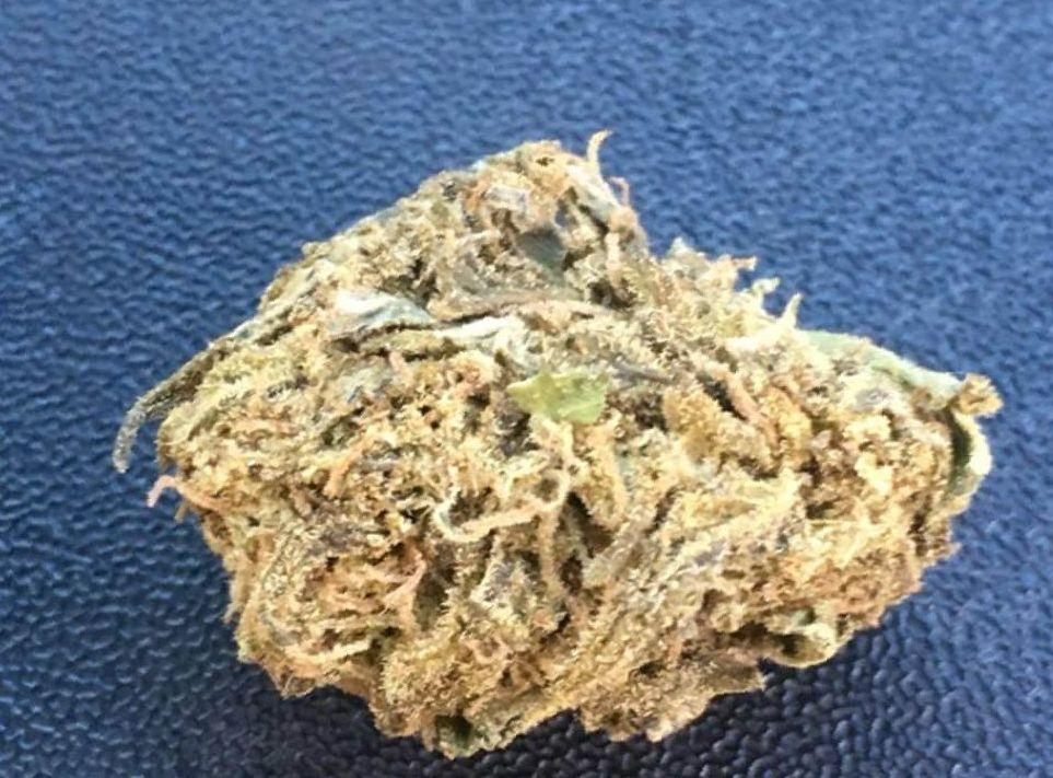 cannabis Blue Dream strain
