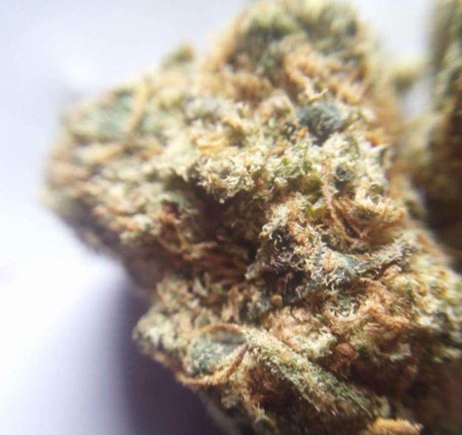 Skywalker OG strain weed