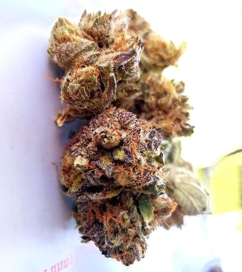 cannabis Bubba Kush strain