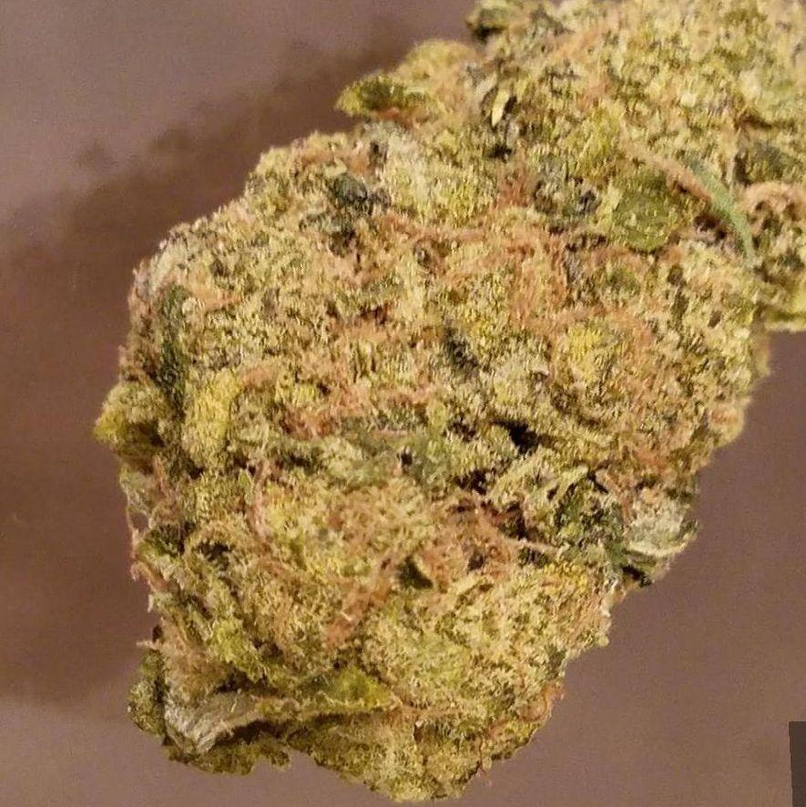 cannabis Skywalker OG strain