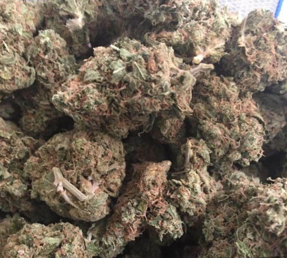 marijuana Skywalker OG strain