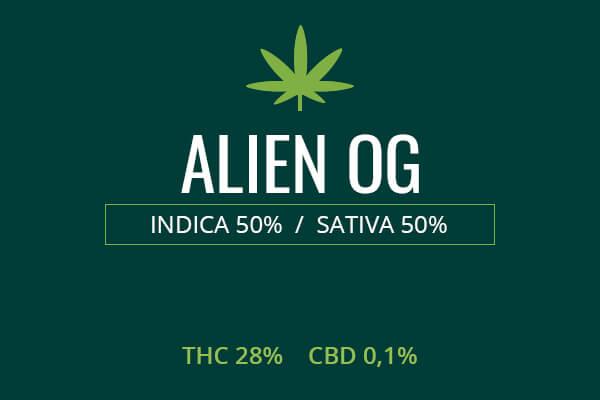 Marijuana Alien OG