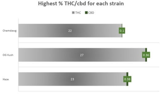 Cannabis Berry White Strain THC CBD