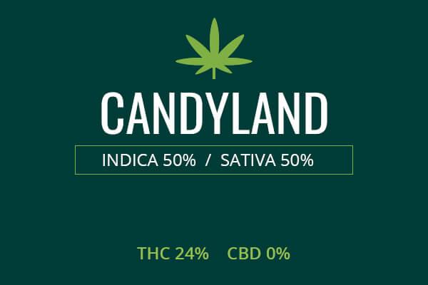 Marijuana Candyland