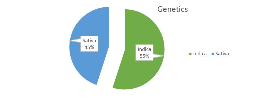 Gelato weed strain genetics