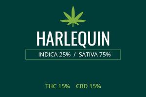 Marijuana Harlequin