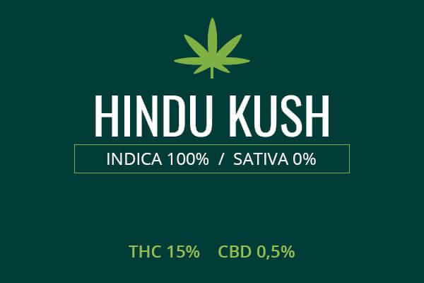Marijuana Hindu Kush