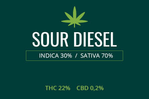 Marijuana Sour Diesel
