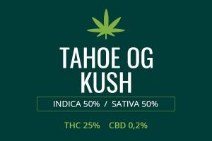 Marijuana Tahoe OG Kush