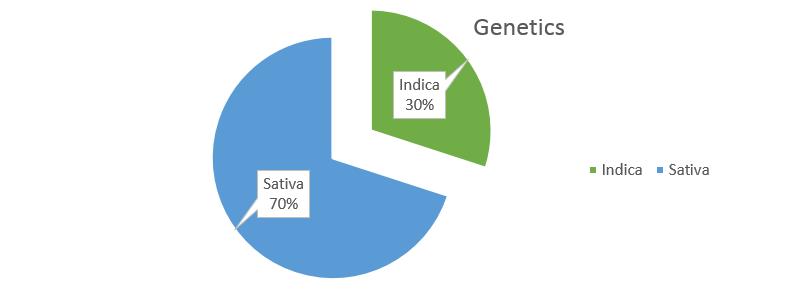 Tangie weed strain genetics