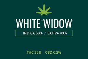 Marijuana White Widow
