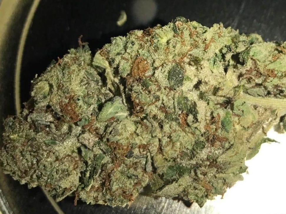 Cannabis Chemdawg Strain