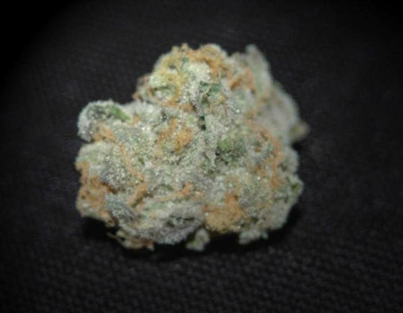 marijuana Candyland strain