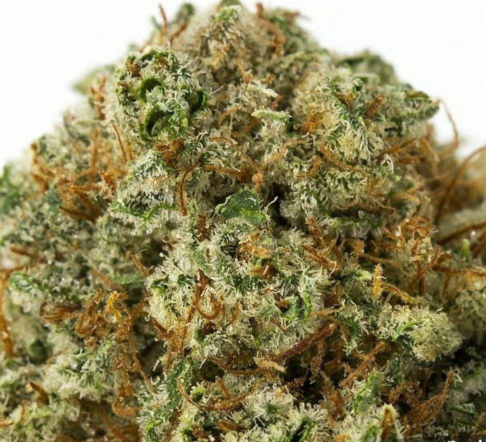 cannabis Fire OG strain