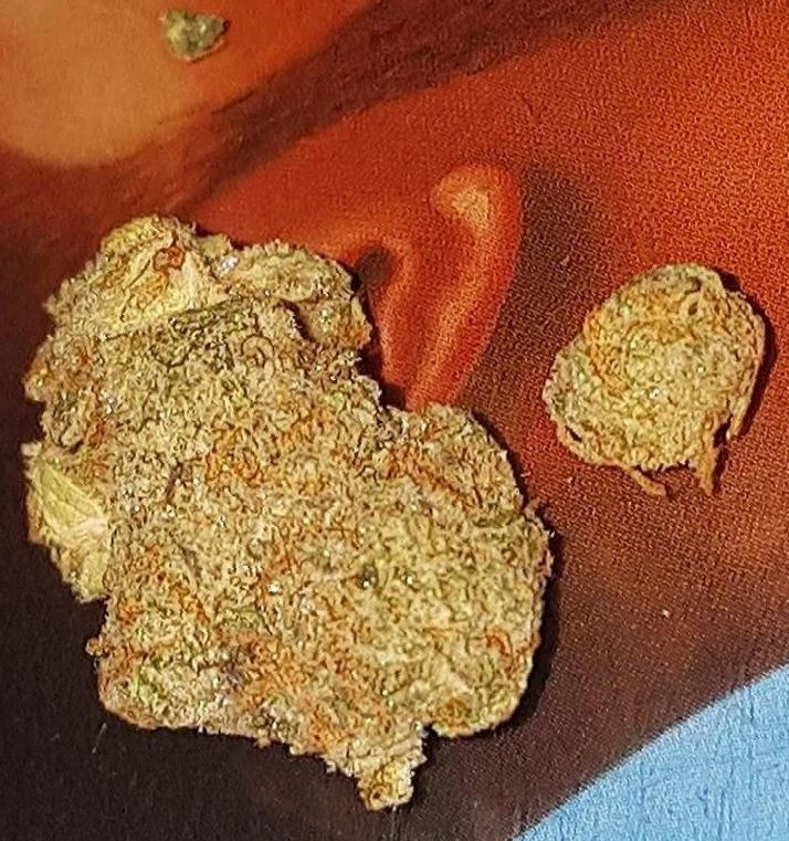 cannabis Gelato strain