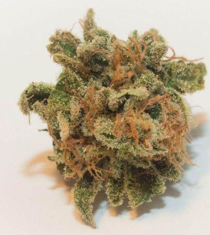 marijuana Tangie strain