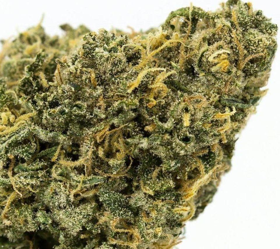 Durban Poison weed strain