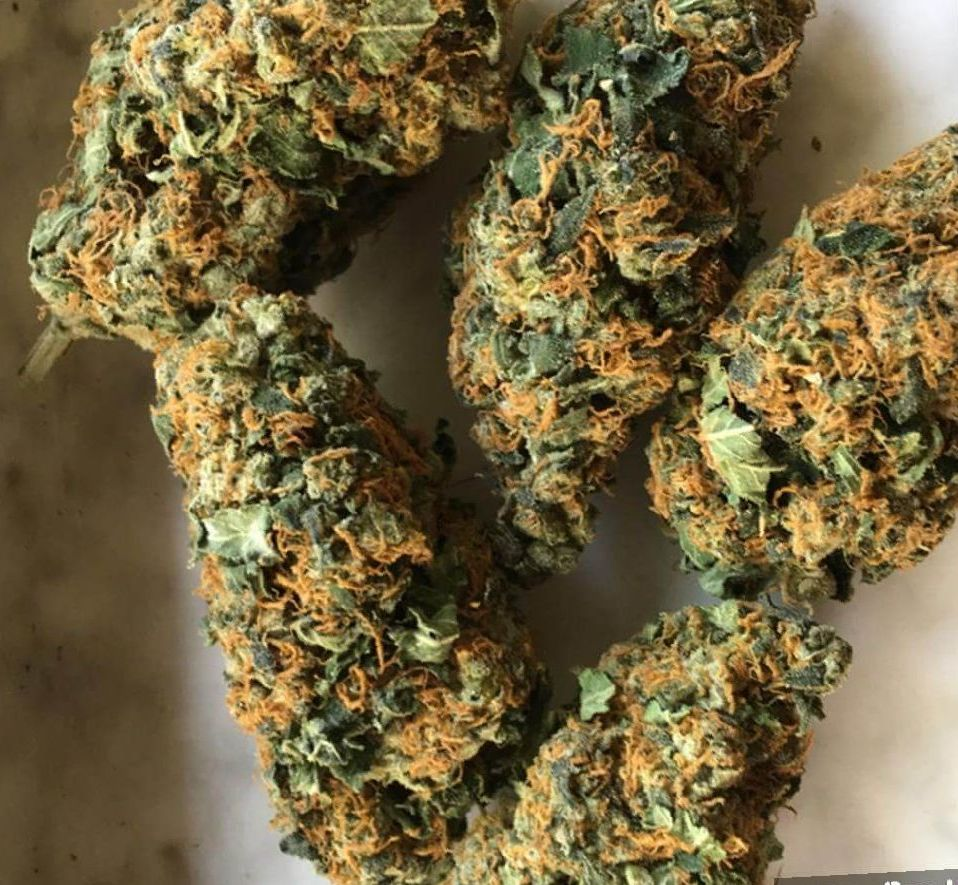 Tangie weed strain