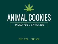 Marijuana Animal Cookies