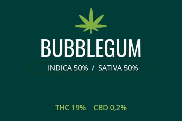 Marijuana Bubblegum