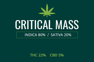 Marijuana Critical Mass