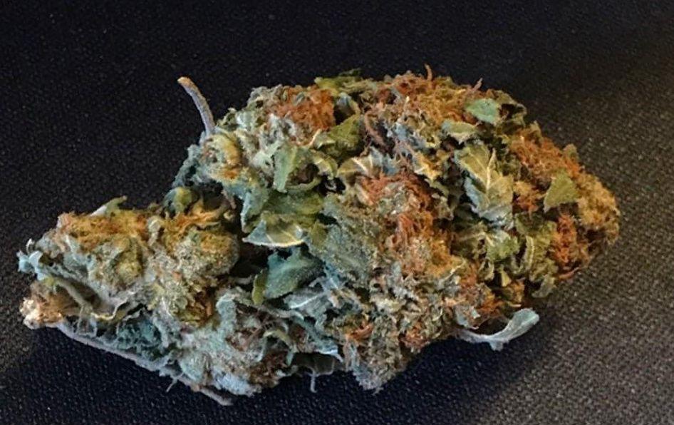 MK Ultra weed Strain